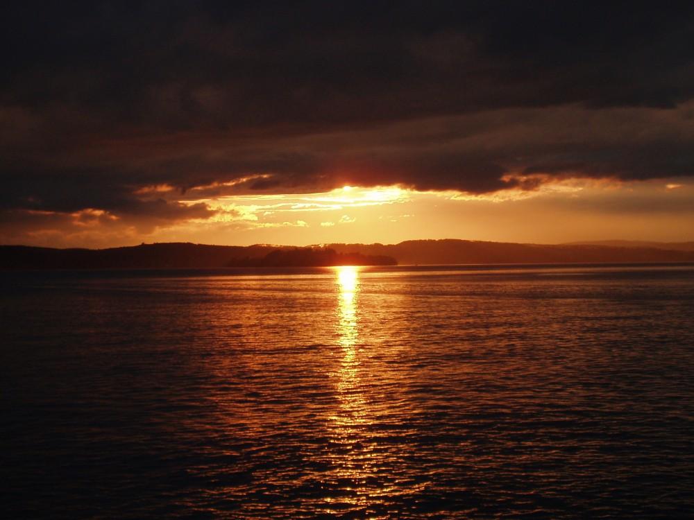 Goldener Bodensee - Sonnenuntergang