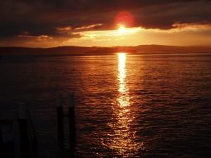 Goldener Bodensee - Blick auf Mainau