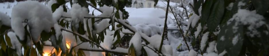 Weiße Weihnacht – Schneemänner - Winterfreuden